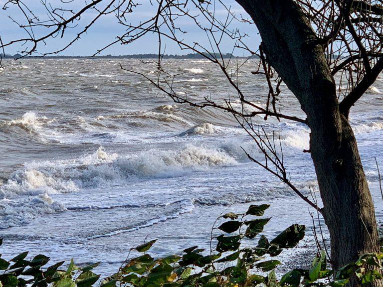Sandy Hook Bay